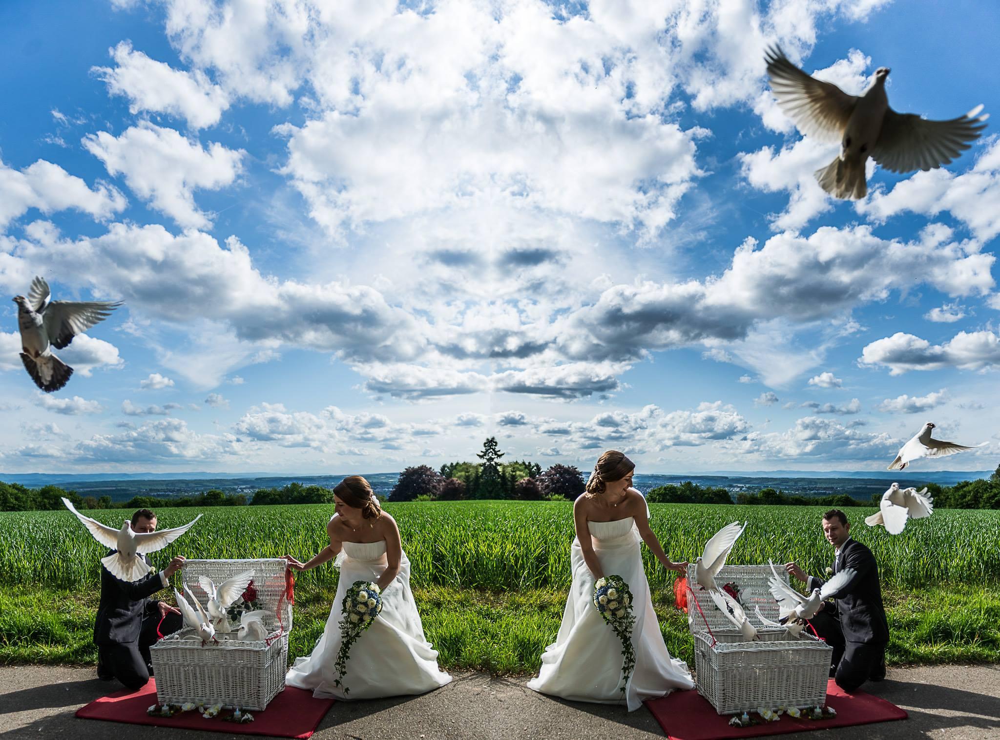 Hochzeitsreportage in Esslingen mit Sandra & Niko, Tauben